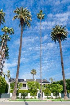 Beverly Hills, California, House, Usa, Street, Beverly