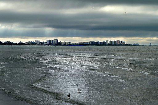Sea, Storm, Birds, Waterpolo, Sky, Clouds, Landscape