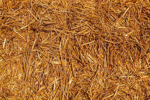 Straw, Dry, Agriculture, Harvest, Summer, Straw Bales