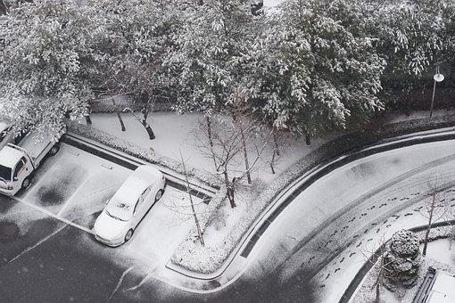 Snow, Korea, Seoul, Cold, Winter, Nature, White