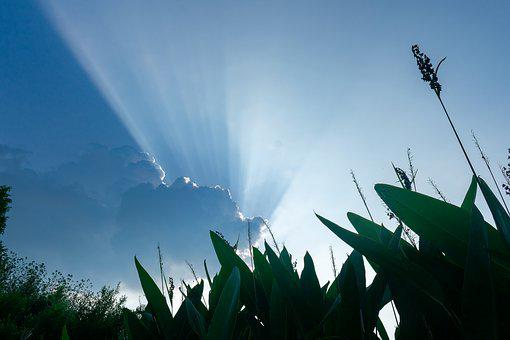 Cloud, Cumulus, Sunshine, Irradiation
