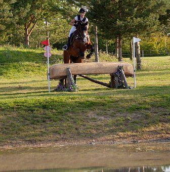 Horse Jumping, Cross Country Jumping, Horse, Galloping