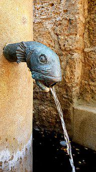 Fountain, Fish Head, Brass, Water Jet, Pool