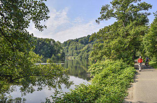 Landscape, Nature, River, Forest, Sky, Scenic, Water