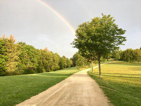 Away, Rainbow, Tree, Summer, Rain, Sky