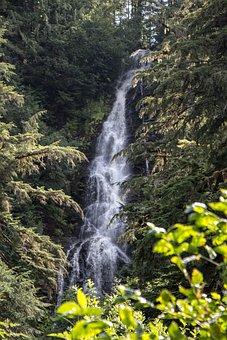 Alaska, Waterfall, Hidden, Foliage, Trees, Spring, Snow