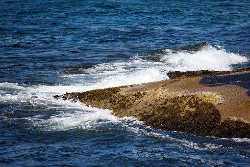 Rocks, Water, Ocean, Sea, Beach, Sky, Nature, Scenic
