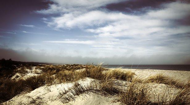 Dunes, Dune Landscape, Marram Grass, Sand, Coast, Sea