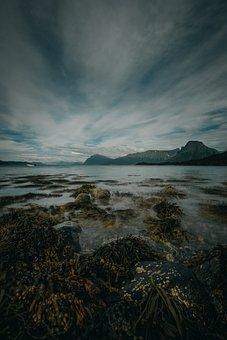 Coastal, Sea, Water, Nature, Beach, Sand, Landscapes