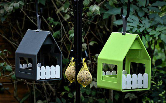 Fat Balls, Bird Houses, Food, Bird, Feeding, Nature