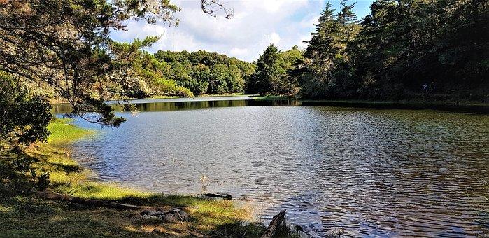 Laguna De Don Manuel, Cantón De Dota, San José