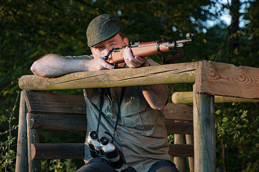 Hunter, Perch, Rifle, Hunting, Forest, Hunter Seat