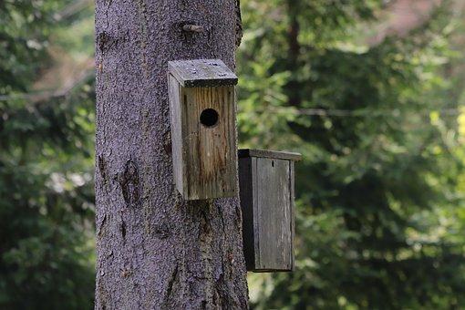 Starling Box, Feeder, Birdhouse, Nest Home, House