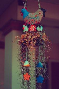 Hanging, Beautiful, Decorate, Decoration, Background