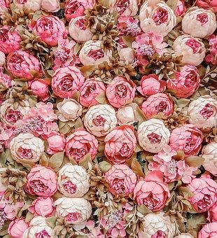 Flowers, Rose, Blossom, Romantic, Flora, Bouquet