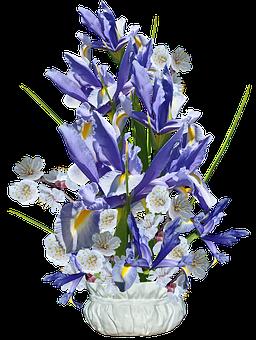 Flowers, Blue, Irises, Dutch, Blossom, Arrangement