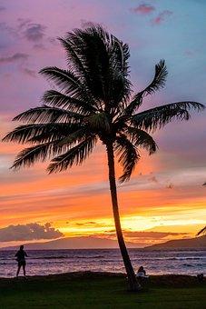 Maui, Hawaii, Beach, Landscape, Nature, Island