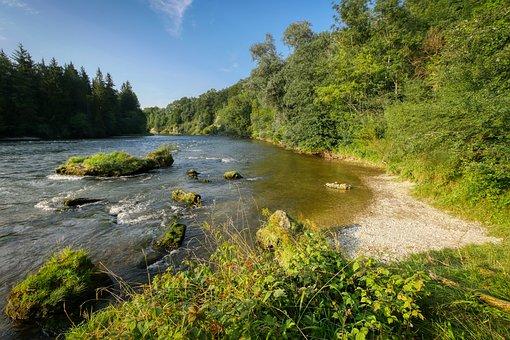 River, Bank, Pebble, Trees, Nature, Mood, Waters