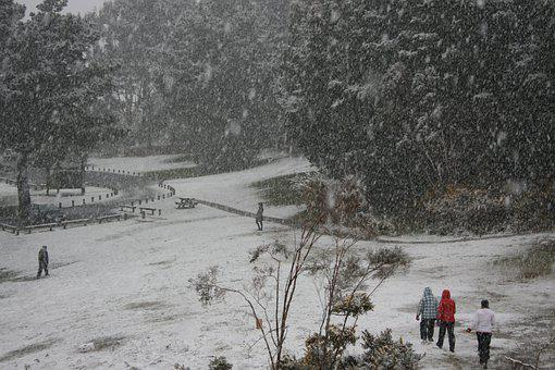 Snow, Lower Hutt, Winter, 2011, Percy Reserve, Grey