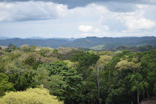 Belize, Mayan Ruins, Treetops, Clouds