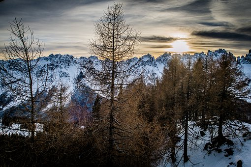 Mountains, Snow, Winter, Trees, Landscape, Outdoors