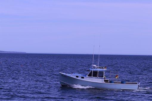 Boat, Fishing, Ocean