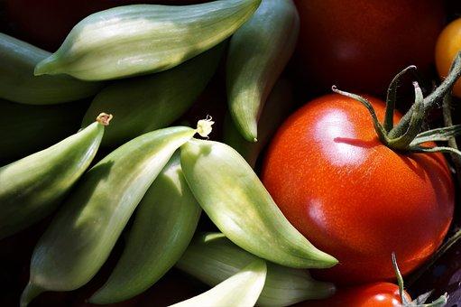 Paradise, Tomato, Ačokča, Vegetables, Crop