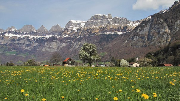 The Alps, Dandelion, Panorama, Village, Plant, Spring