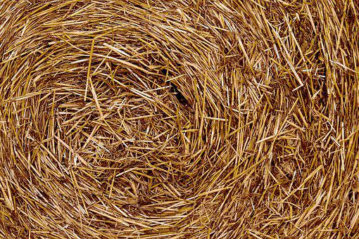 Straw, Straw Bales, Close Up, Harvest, Harvested