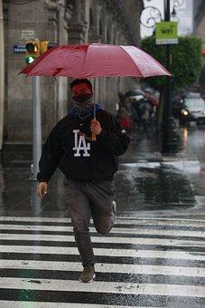 Umbrella, Rain, Run, Boy, Street, Gray Running