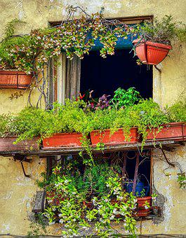 Italy, Tuscany, Architecture, Vacations, Building