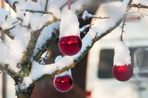 Snow, Balls, Tree, Christmas, Decoration, Winter