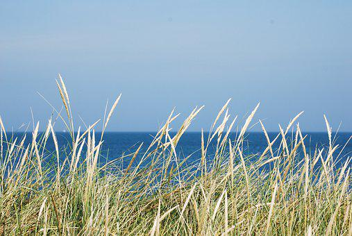 Beach, Straw, Lyme Grass, View, Sea, Water, Holiday