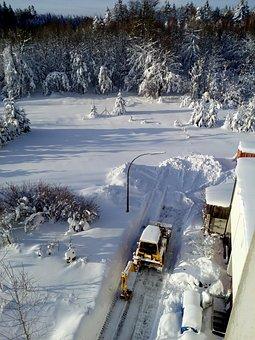 Winter, Excavators, Ice, Snow, Frost, Tree, Machine