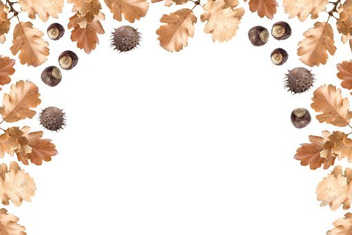 Autumn, Frame, Background, Fall, Season, Nature