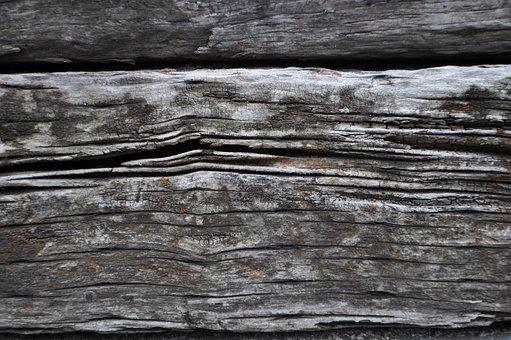 Wood, Natural, Nature, Board, Texture, Background, Tree