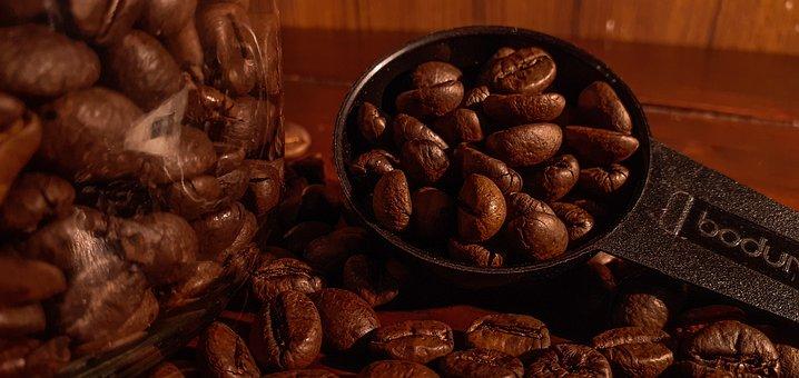 Coffee, Coffee Bean, A Coffee Shop Café, Cup, Morning