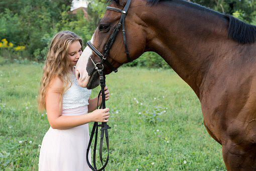 Girl, Friendship, Horse, Togetherness, Woman