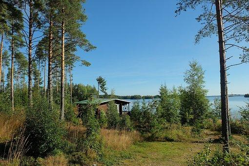 Beauty, Love, Nature, Lake, Finland, Macro, Dawn