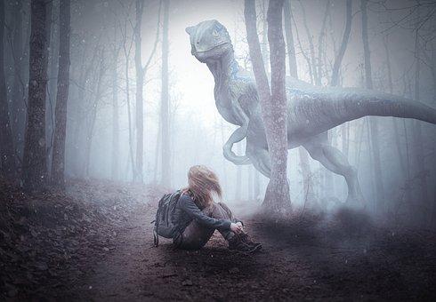 Raptor, Photoshop, Forest, Animal, Carnivores