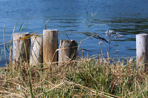 Jetty, Web, Water, Lake, Port, Still, Mood, Boardwalk