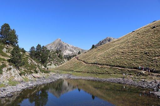 Pyrenees, Mountain, Fir, Nature, Landscape, Pyrennées