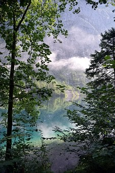 Lake, Trees, Water, Nature, Landscape, Relaxation