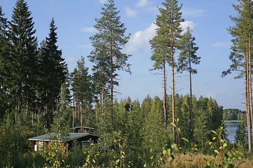 Beauty, Trip, Finland, Russia, Emotions, Happiness