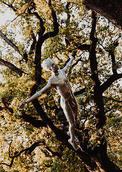 Nature, Art, Statue, Tree, Silver, Autumn, Photo