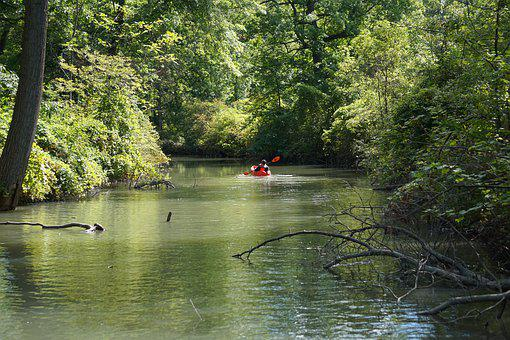 Kayak, Kayaker, River, Kayaking, Canoe, Water, Boat