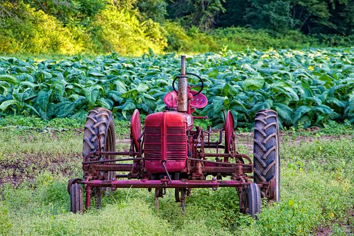 Red, Tractor, Harvest, Farming, Connecticut, Farm