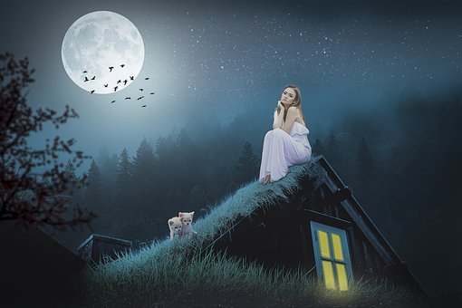 Manipulation, Roof, Moon, Full Moon, Grass, Woman, Cat