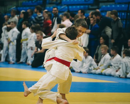 Judo, Athlete, Sport, Belt, Martial, Sports, Combat