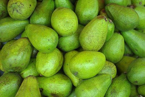 Avocado, Fruit, Eat, Healthy, Vitamins